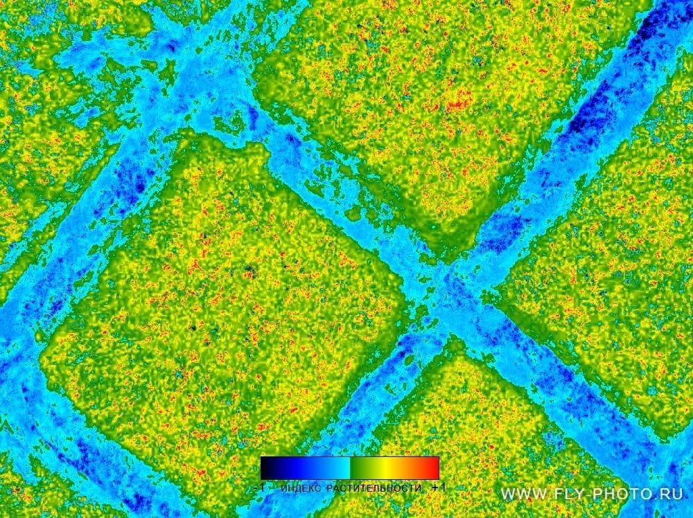 Гиперспектральная съемка леса в ИК-диапазоне